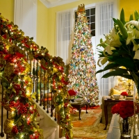 Rooms in Bloom holiday party - Magazine submission