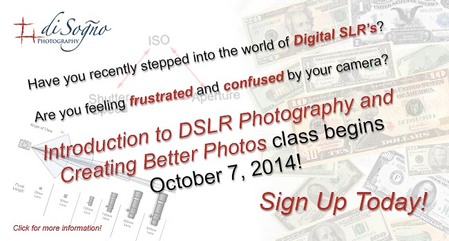 DSLR-Classes-banners5-141007