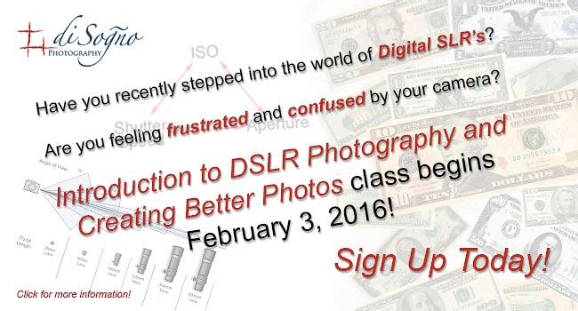 www.disognophoto.com/introdslr